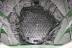 Leningrad-II 1 reactor internals - 48